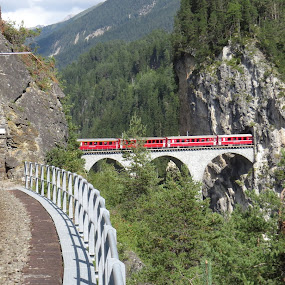 Bernina Express (Engadina, CH) by Riccardo Schiavo - Transportation Trains ( land, device, transportation,  )