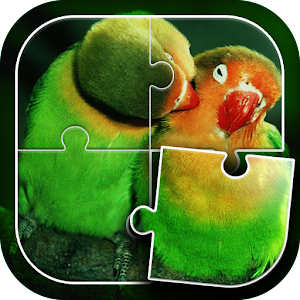 Birds Jigsaw Puzzle for PC and MAC