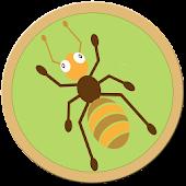 Amazing Ant