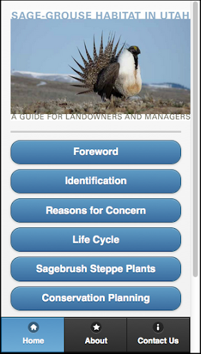 The Sage-Grouse in Utah