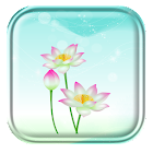 Pink Lotus Live Wallpaper icon