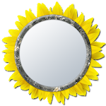 Mirror 4 Selfie [Camera] 1.1.0 Apk