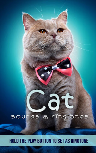 Cat Sounds Ringtones