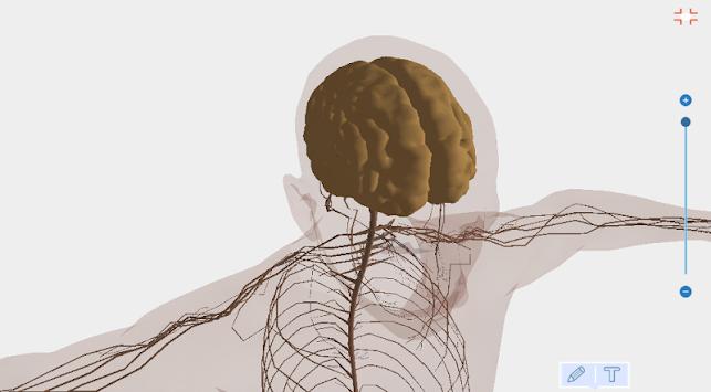 Download Humano Anatomía Del Cuerpo 3D - Libre Apk Latest Version ...