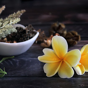 frangipani flower by Assaifi Fajarmass - Artistic Objects Still Life ( white flower, nature, still life, frangipani, flower )