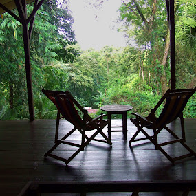 Rainforest Deck Chairs by Donovan Twaddle - Buildings & Architecture Architectural Detail ( calm, uvita, chairs, green, relaxing, rainforest, cascada verde, tranquil, jungle, serene, hostel, costa rica, second floor, deck )