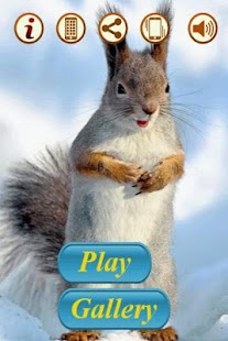 玩解謎App|孩子們的困惑:免費|APP試玩
