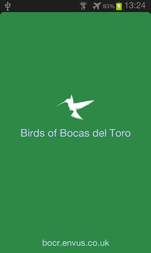 Bird Guide for Bocas del Toro
