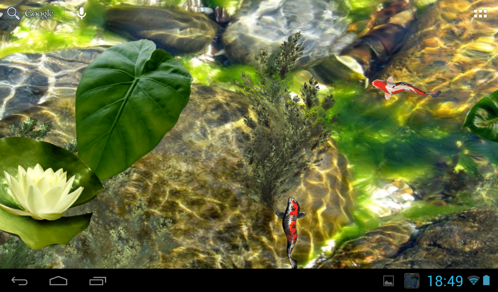 Koi pond android apps on google play for Koi pond removal