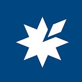 Blue Star Interactive DIY