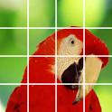 Puzzle Bird icon