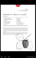 Screenshot of Cuisine PL - version française