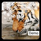 Tiger Jigsaw Puzzles Demo