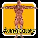Aprende anatomia humana niños icon
