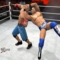 WWE 13 News icon