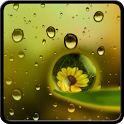 Blooming Flower in Dew HD Lock icon