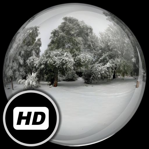Panorama Wallpaper:SnowyForest