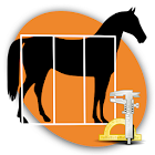 Horse Conformation icon