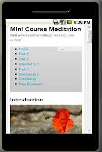 Meditation Mini Course - screenshot thumbnail