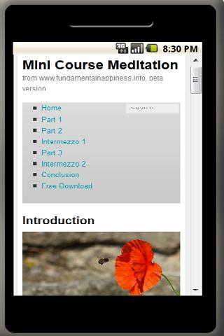 Meditation Mini Course - screenshot