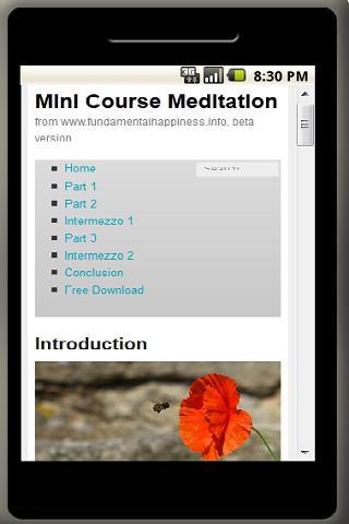 Meditation Mini Course - screenshot