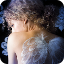 Angel Feather Oracle Cards v1.5