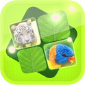 Jungle Memory Game icon