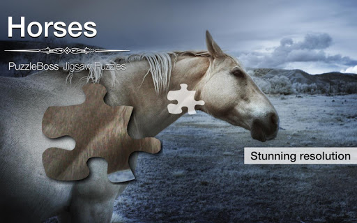 Horse Jigsaw Puzzles Demo