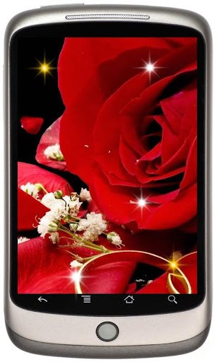 Wedding Roses live wallpaper