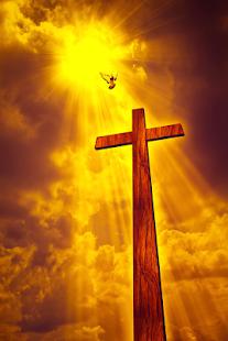 Holy Bible King James Version - náhled