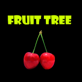 Fruit Three