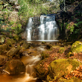 Tigers Clough Waterfall by Brian Leach - Landscapes Waterscapes