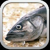 Рецепты из рыбы беспл.