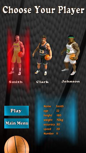 Basketball Madness Pro