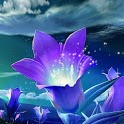 Illusion Purple Sparkle Flower icon
