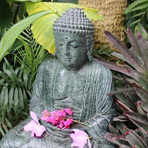 Budha.JPG