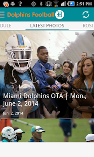 Dolphins Football- screenshot thumbnail
