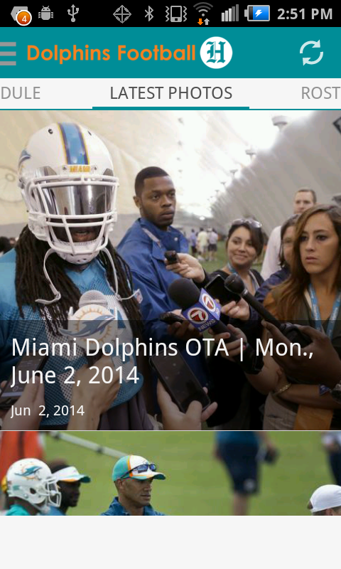 Dolphins Football- screenshot