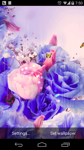 夢幻玫瑰繽紛花朵壁紙