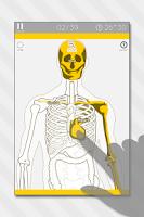 Screenshot of Enjoy Learning Anatomy puzzle