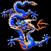 3D lucky dragon 3