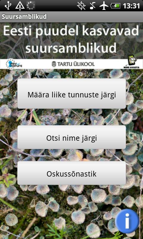 Eesti epifüütsed suursamblikud- screenshot