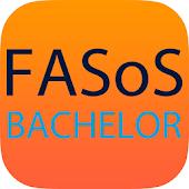 FASoS Bachelor