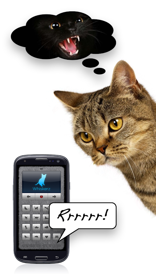 Human-to-Cat Translator- screenshot