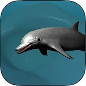 Coral Reef Dolphin Simulator