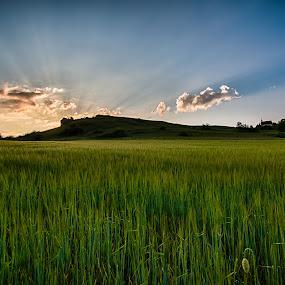 The rays of the sun by Alexander Kulla - Landscapes Sunsets & Sunrises ( mountain, strahlen, bavaria, sonne, sunset, walberla, germany, frankonia, forchheim, rays,  )