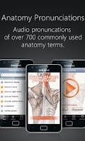 Screenshot of Anatomy Pronunciations