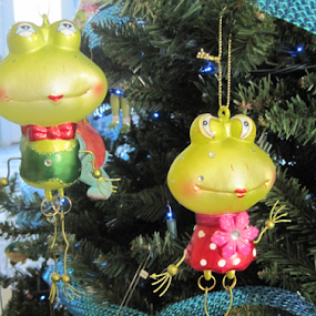 Husband and Wife by Lynn Morley - Public Holidays Christmas ( home, blue, happy, christmas, toadhall, frogs,  )