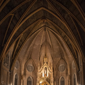 Catedral Sta. Maria Auxiliadora, Mexico DF by Christian Diboky - Buildings & Architecture Places of Worship ( santa julia, df, mexico city, church, mexico, neo-gothic, auxiliadora, virgen, maria, catedral, gustavo madero, anahuac,  )
