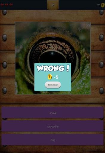 免費下載益智APP Animals Eyes QuizUp app開箱文 APP開箱王